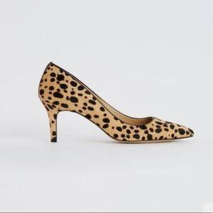 "Ann Taylor ""Eryn"" leopard pumps"